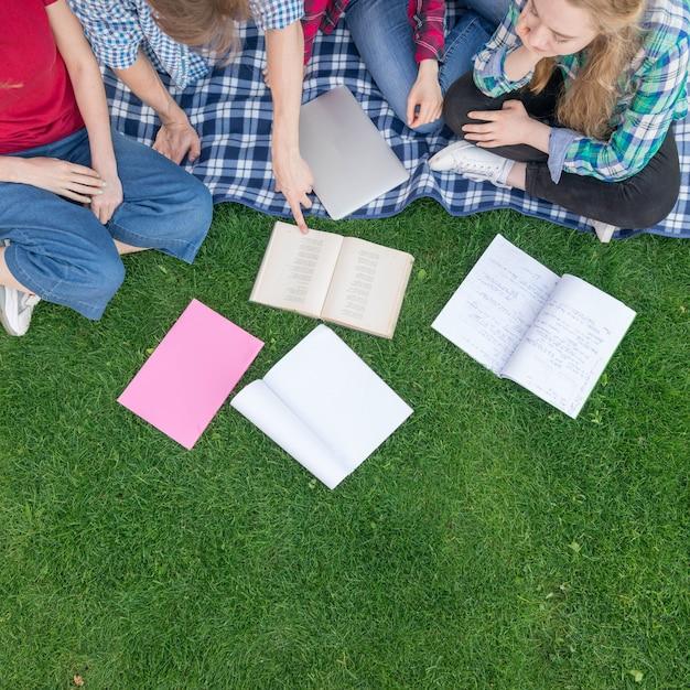 Vista superior, de, estudantes, com, livros grama Foto gratuita