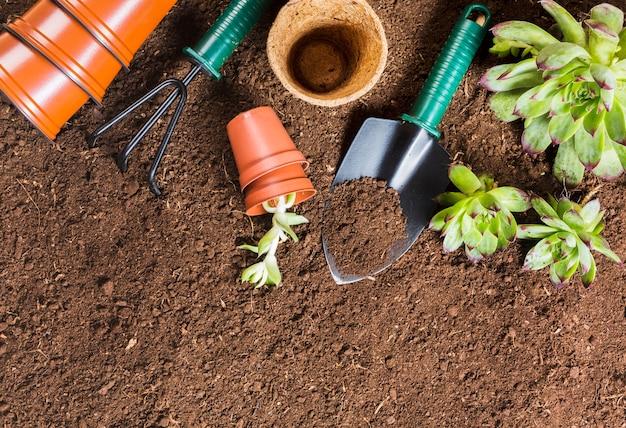 Vista superior de ferramentas de jardinagem no chão Foto gratuita