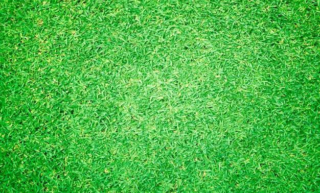 Vista superior de grama verde Foto Premium