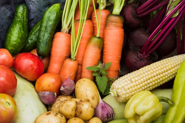 Vista superior de legumes frescos do jardim Foto gratuita