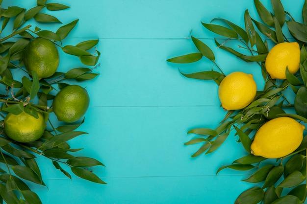 Vista superior de limões frescos amarelos e verdes com folhas em azul com espaço de cópia Foto gratuita