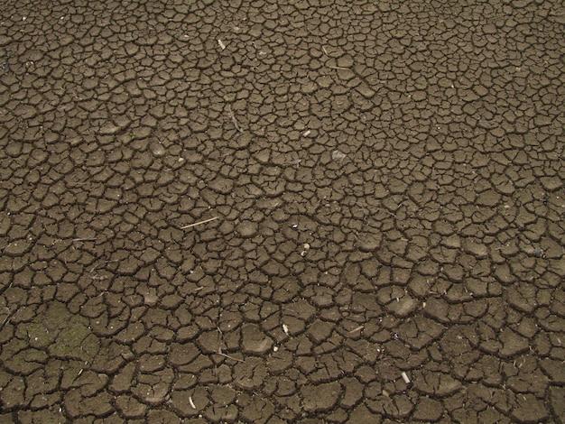 Vista superior de solo seco e rachado. conceito de aquecimento global, mudança climática e el nino Foto gratuita