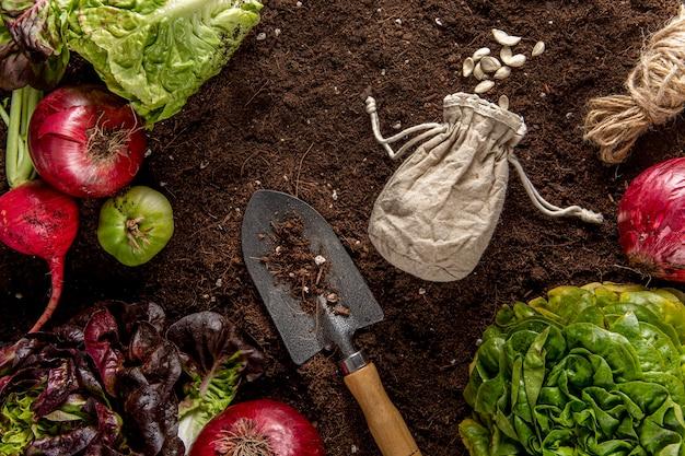 Vista superior de vegetais com salada e ferramenta Foto gratuita