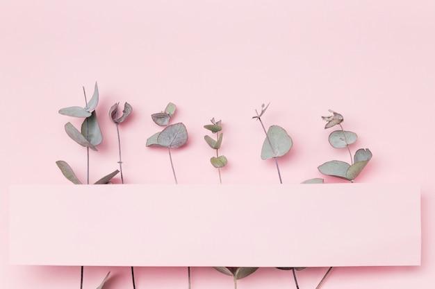 Vista superior deixa no fundo rosa com papel em branco Foto gratuita