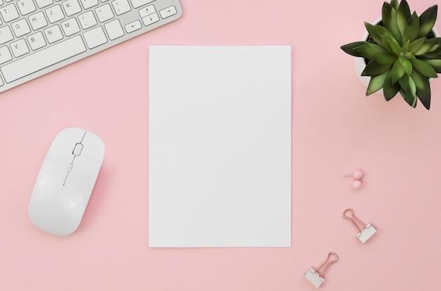 Vista superior do papel em branco com mouse e suculenta Foto Premium