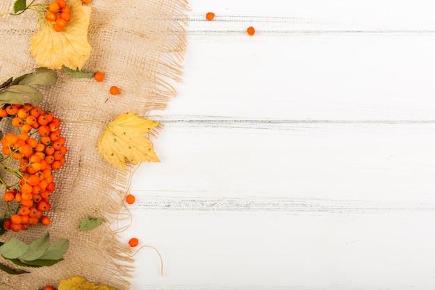 Vista superior firethorn e folhas com espaço de cópia Foto gratuita