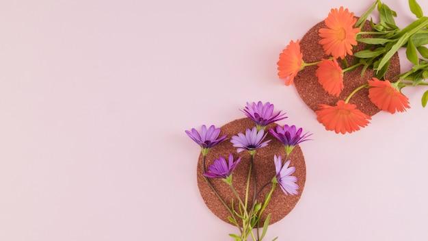 Vista superior flores e pétalas Foto gratuita