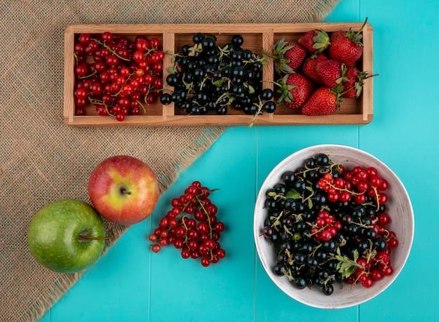 Vista superior groselha vermelha e preta com morangos e maçãs sobre um fundo azul Foto gratuita