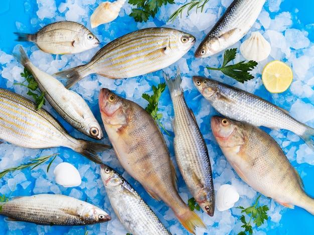 Vista superior mistura de peixes frescos no gelo Foto gratuita