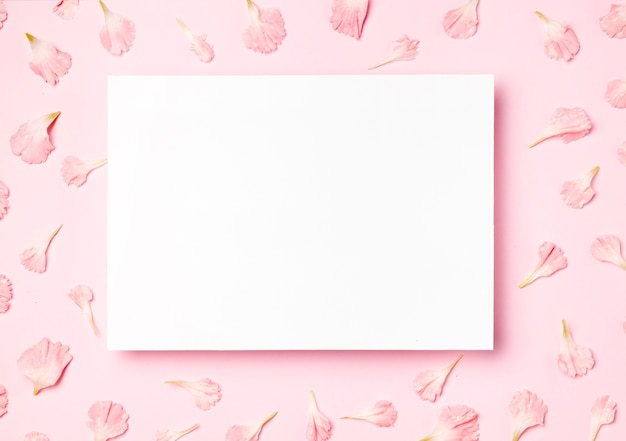Vista superior moldura branca em fundo rosa Foto Premium