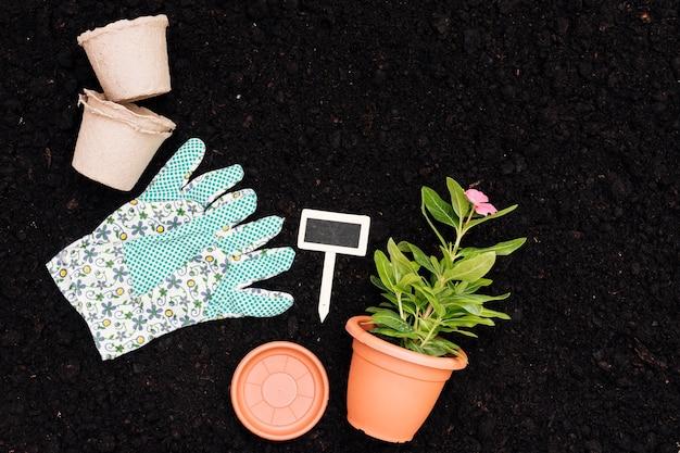 Vista superior, vaso de flores no fundo do solo Foto gratuita