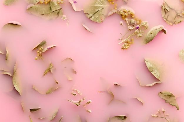 Vista superior verde pálido deixa na água cor-de-rosa Foto gratuita