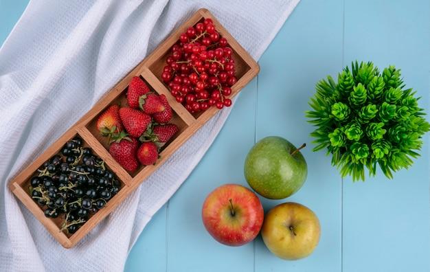 Vista superior vermelha com groselha preta com morangos e maçãs sobre um fundo azul claro Foto gratuita