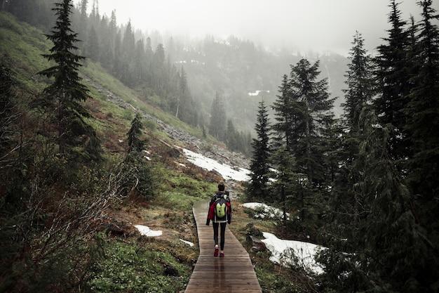 Vista traseira, de, mulher caminhando, ligado, boardwalk, sobre, a, montanha Foto gratuita