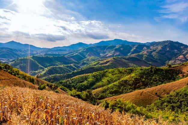 Vistas da montanha na área da província de nan, tailândia Foto Premium