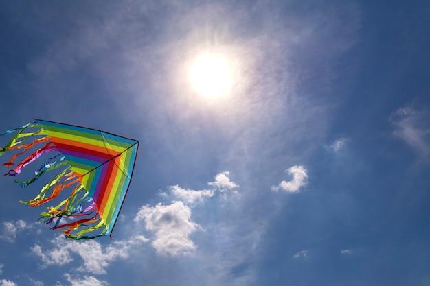 Voo colorido do papagaio no céu do fundo do céu azul. sol brilhante Foto Premium
