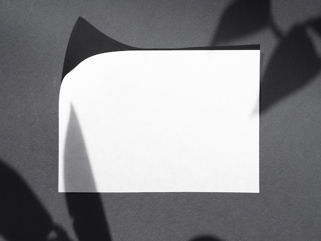 White paper da vista superior com sombras Foto gratuita