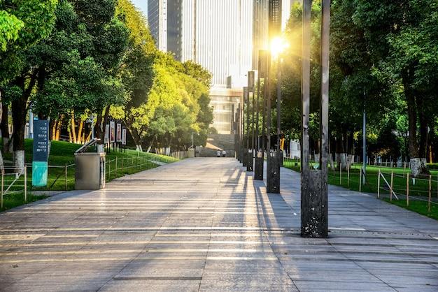 Winding road através de um parque da cidade Foto gratuita