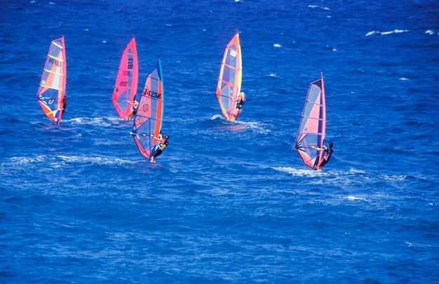 Windsurfers na água, paia, maui, havaí Foto Premium