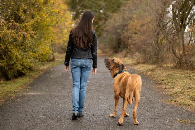 Yong, mulher, com, cão grande, fila, brasileiro, raça, em, outono, parque Foto Premium