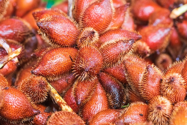 Zalacca ou fruta de cobra, sabores de frutas doces sazonais tradicionais da tailândia Foto Premium
