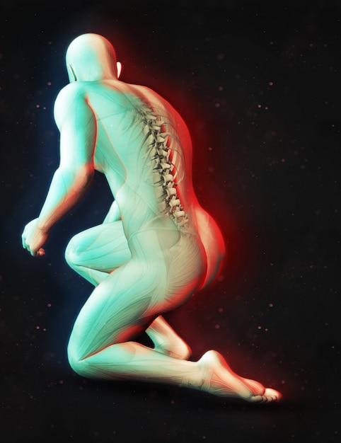 3d-darstellung von einer männlichen figur in kniend position mit wirbelsäule hervorgehoben und dual-farbe-effekt Kostenlose Fotos