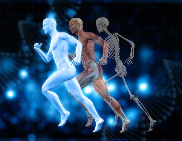 3D medizinischen Hintergrund mit männlichen Figuren in laufender ...