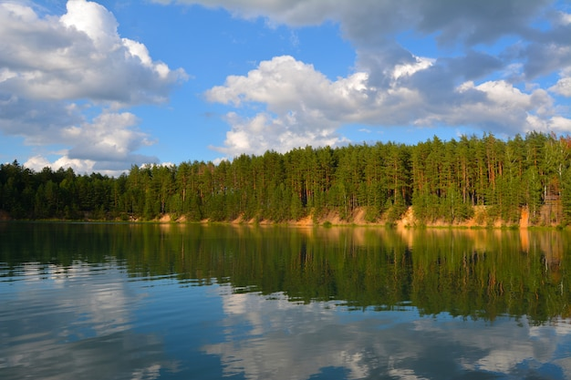 Abend am see in einem kiefernwald. blaue seen in der chernihiv region, ukraine Premium Fotos