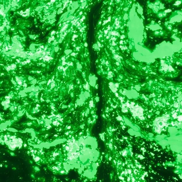 Abstraktes grünes holi farbiger strukturierter hintergrund Kostenlose Fotos