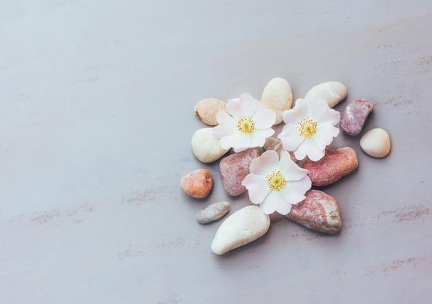 Abstraktion von rosa steinen und von blumen auf einem grauen hintergrund mit raum für text, draufsicht Premium Fotos