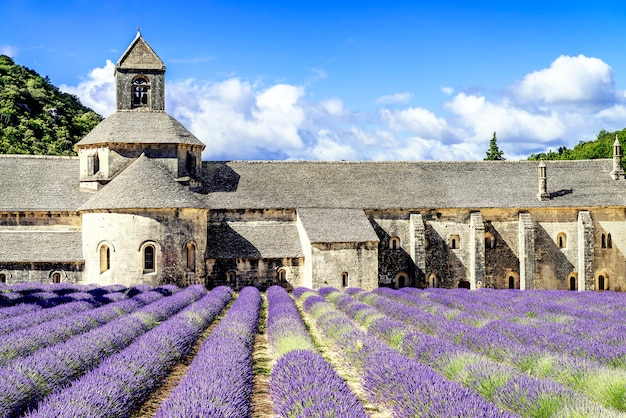 Abtei von senanque Premium Fotos