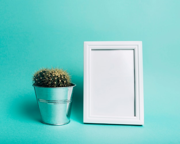 Ährentragende kaktuspflanze nahe dem leeren weißen rahmen gegen türkishintergrund Kostenlose Fotos