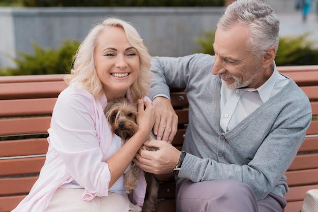 Älteres ehepaar geht mit ihrem kleinen hund auf den platz. Premium Fotos