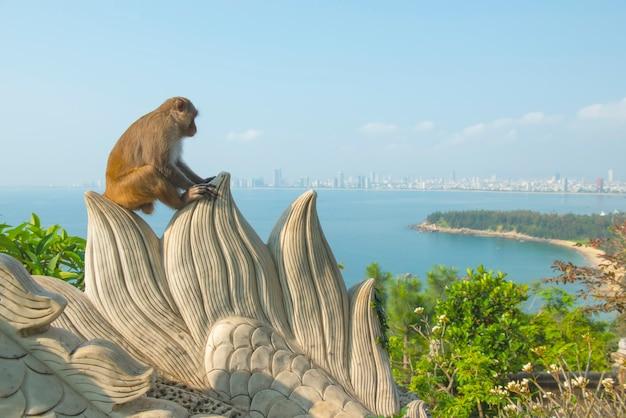 Affe in linh ung-tempel sitzen auf felsen mit danang-stadt und -strand Premium Fotos