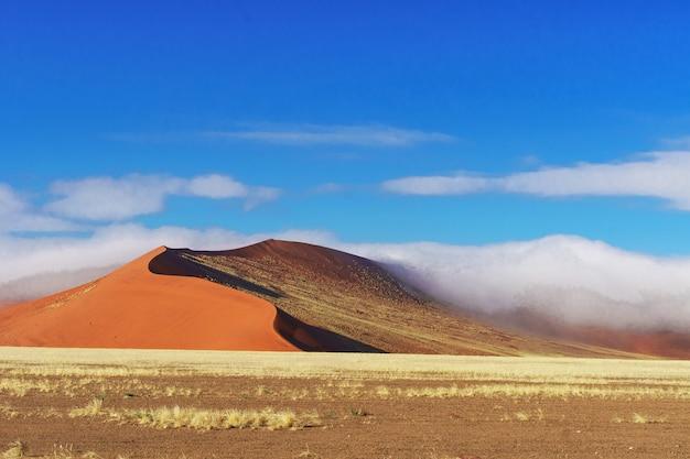Afrikanische landschaft, schöne sonnenuntergangdünen und natur der namibischen wüste, sossusvlei, namibia, südafrika Premium Fotos