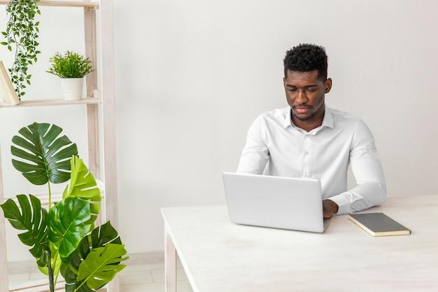 Afroamerikanermann, der arbeitet und monsterpflanze Kostenlose Fotos