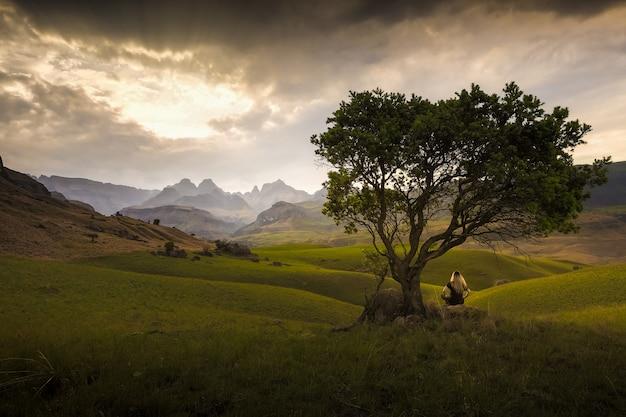 Alleine im freien landschaft Premium Fotos