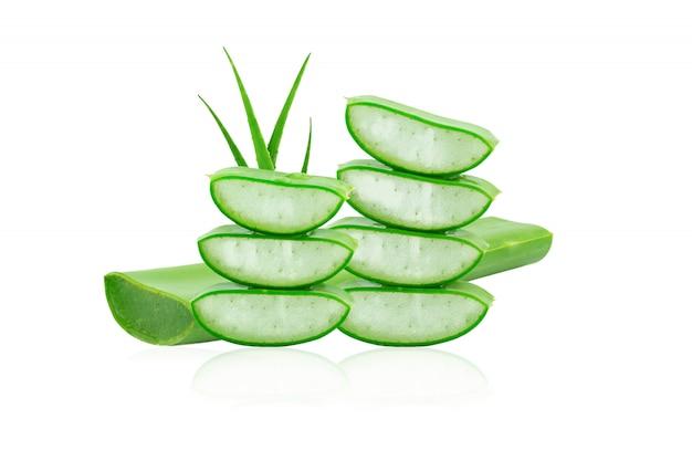 Aloe vera frisch isoliert auf weißem hintergrund Premium Fotos