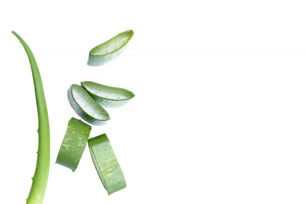 Aloe vera in stücke geschnitten Premium Fotos