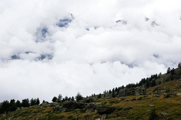 Alpine szene mit wolken unter den bergen. Premium Fotos