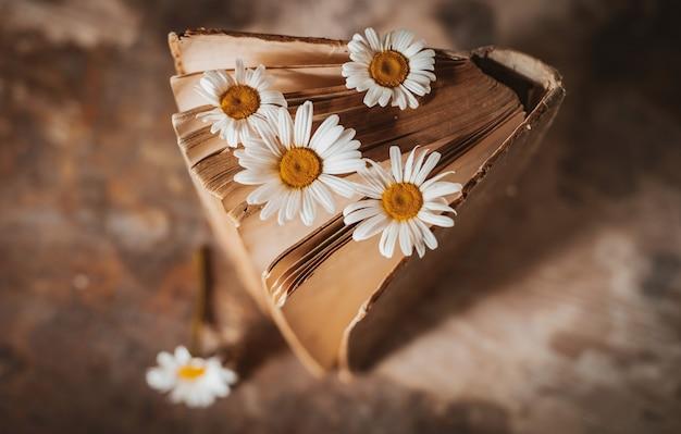 Alte bücher mit blumen der weißen feldgänseblümchen. Kostenlose Fotos