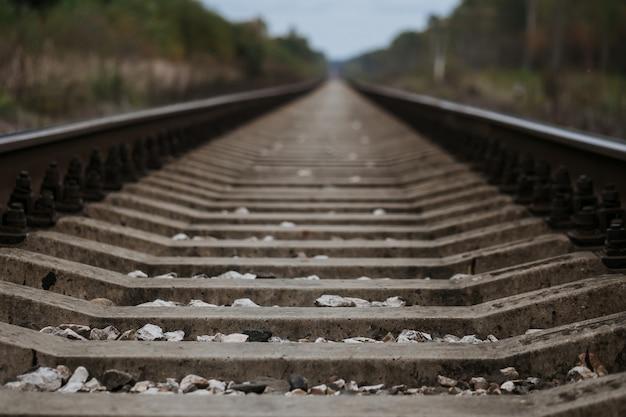 Alte eisenbahn im wald am bewölkten herbst Premium Fotos