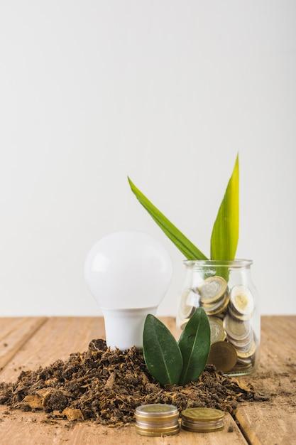 Anlage, die vom glas mit münzen wächst Kostenlose Fotos