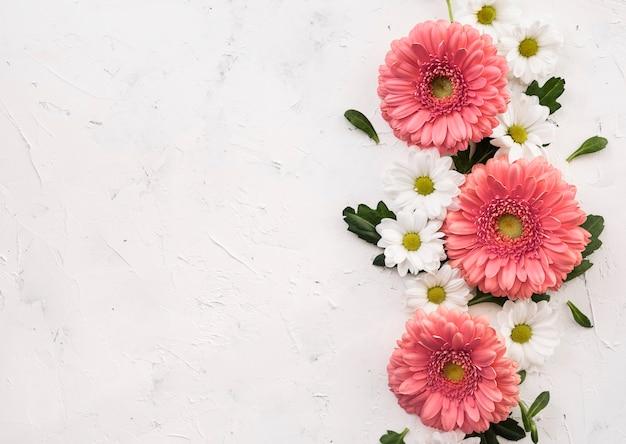 Anordnung für draufsicht der rosa gerbera- und gänseblümchenblumen Premium Fotos
