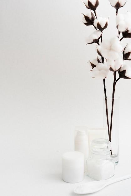 Anordnung mit blumen und weißem hintergrund Kostenlose Fotos