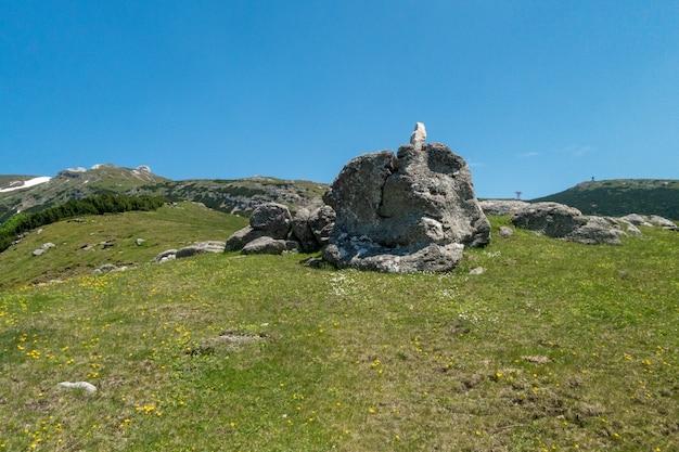 Ansicht der kleinen sphinxes, in den karpatenbergen, bucegi-naturpark, rumänien Premium Fotos