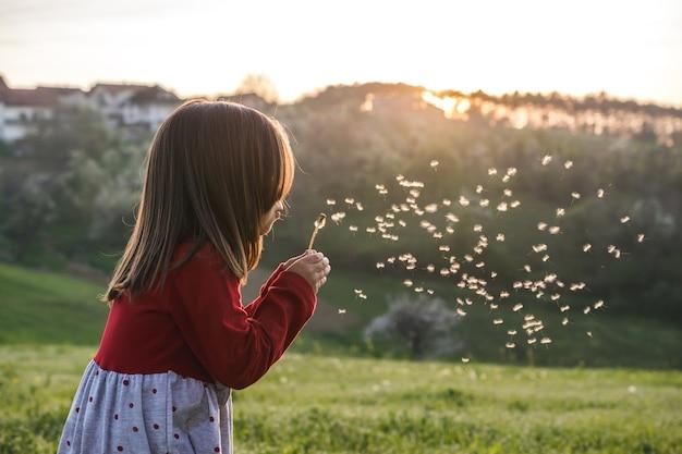 Ansicht eines kindes, das eine rote bluse trägt und löwenzahn in einem feld während des sonnigen tages bläst Kostenlose Fotos