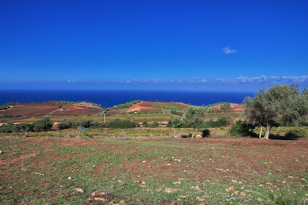 Ansicht über mittelmeerküste in algerien, afrika Premium Fotos