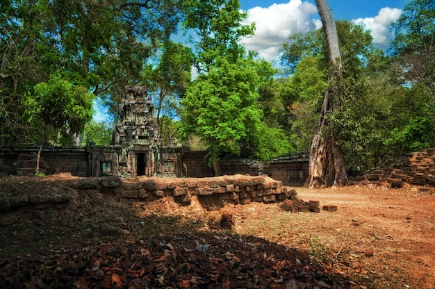 Antike ruinen des angkor-tempels im angkor wat-komplex, kambodscha. Premium Fotos