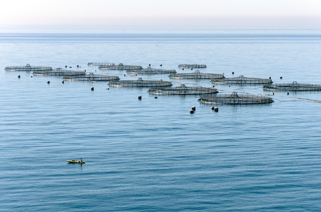Aquakultur im mittelmeer Premium Fotos